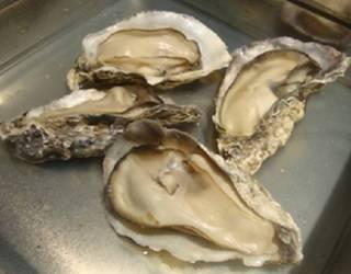 牡蠣ガンガン焼き