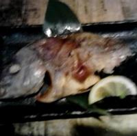 鯛の一夜干し