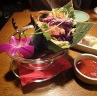 手さき蒸し鶏の韓国風サラダ