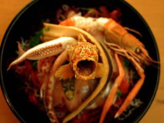 駿河湾深海魚丼