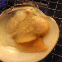 活白蛤の殻焼(2個)