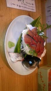 首折れサバの刺身、島らっきょうの天ぷら