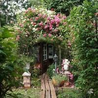 テラスド ガーデン