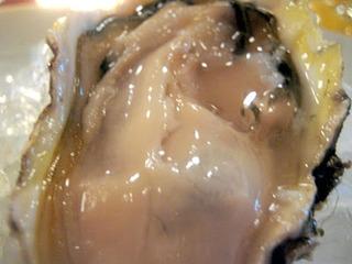 北海道の永井さんの幻の牡蠣