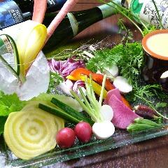 産直野菜10種のバーニャカウダ