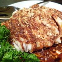 四川口水鶏