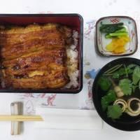 鰻の白焼き、お好みで天ぷら、お香もの等