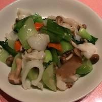 チンゲン菜と柔らかイカの広東風炒め