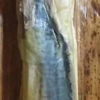 鯖寿司 バッテラ