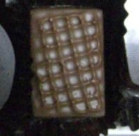 ショコラ カシス