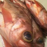 骨まで食べれるくらいにカリカリに揚げてからオイスターで煮込んだ魚料理!