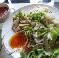 蒸し鶏サラダご飯