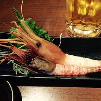 【幻のブドウ海老&特大ぼたん海老】食べ比べセット