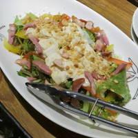生湯葉と合鴨サラダ