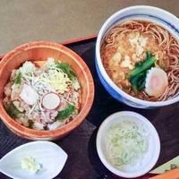 ミニ鯵丼とざる又はたぬき